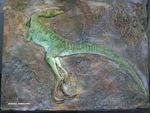 Sculpture d'un compsognathus mort sur un lit de vase. Il est exposé au Musée des Dinosaures à Esperaza.