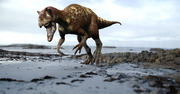 dinosaure, théropode, Allosaure, Michel Fontaine